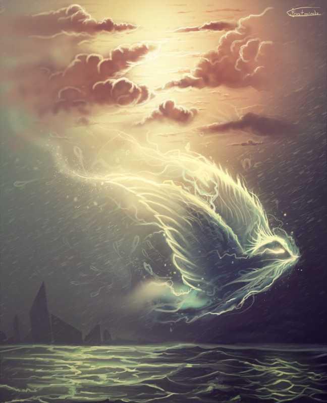 bird-soul-by-frostwindz.jpg